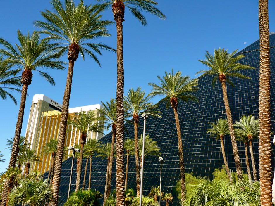 las-vegas-hotel-luxor-pyramide-egypte-palmiers