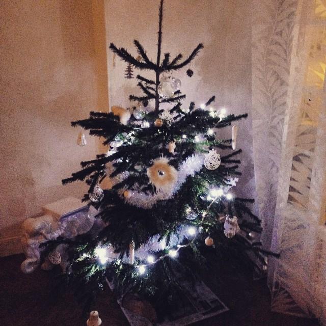 ?Christmas Spirit