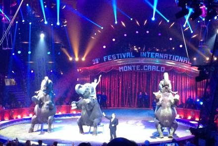 festival-international-cirque-monte-carlo-piste-elephant-monaco